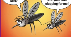 Mosquito jokes -- Animal Jokes| Funny Jokes