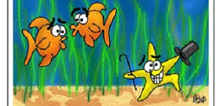 Funny Jokes About Fish Tagalog,Fish Jokes For Kids One Liners