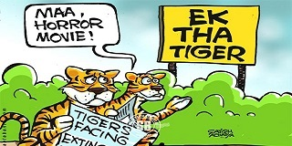 Tiger jokes for kids