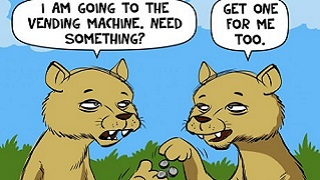 Funny lion jokes for kids in the world